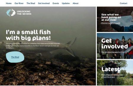 Unlocking the Severn Website